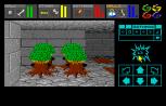 Dungeon Master Amiga 079