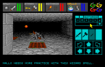 Dungeon Master Amiga 084
