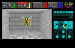 Dungeon Master Amiga 093