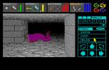 Dungeon Master Amiga 095