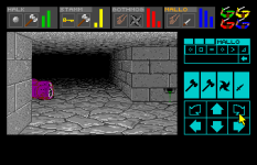 Dungeon Master Amiga 099