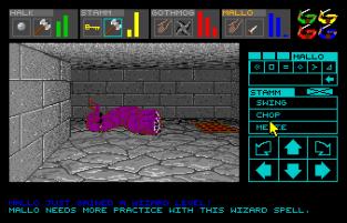 Dungeon Master Amiga 100