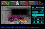Dungeon Master Amiga 101