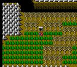 Gargoyle's Quest 2 NES 85