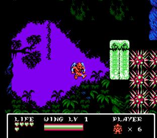 Gargoyle's Quest 2 NES 89