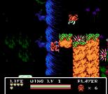Gargoyle's Quest 2 NES 91