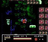Gargoyle's Quest 2 NES 94