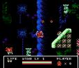 Gargoyle's Quest 2 NES 97