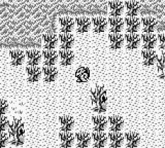 Gargoyle's Quest Game Boy 22