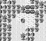 Gargoyle's Quest Game Boy 30