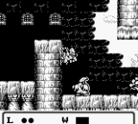 Gargoyle's Quest Game Boy 48