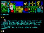 Hunchback The Adventure ZX Spectrum 49