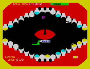 Molar Maul ZX Spectrum 42