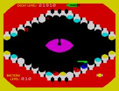 Molar Maul ZX Spectrum 43