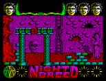 Nightbreed ZX Spectrum 15