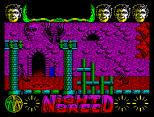 Nightbreed ZX Spectrum 16