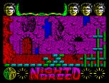 Nightbreed ZX Spectrum 18