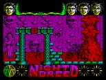Nightbreed ZX Spectrum 19