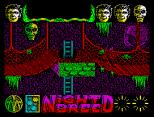Nightbreed ZX Spectrum 30