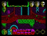 Nightbreed ZX Spectrum 38