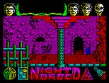 Nightbreed ZX Spectrum 58