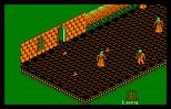 Nosferatu Amstrad CPC 38