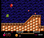 Toki NES 101