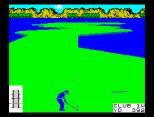 Leaderboard ZX Spectrum 41
